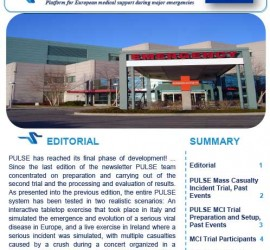 PULSE-Newsletter-Issue-3